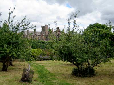View of the Abbey from the gardens
